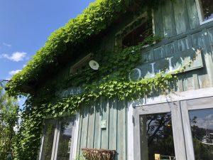 ガーデンソイル 園芸店